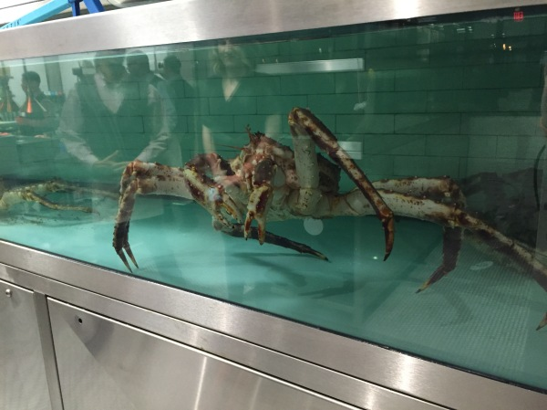 Red king crab in the live tank